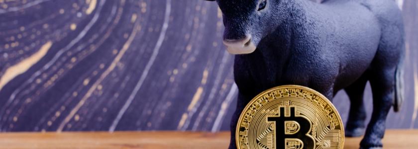 Billion Dollar Public Company Microstrategy Moves $250 Million Into BTC, Says Bitcoin 'Superior to Cash'
